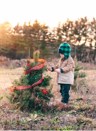 Leland At Timberly | Michigan Children's Photographer